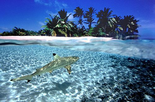 Cocos Islands Keeling Islands VK9EC