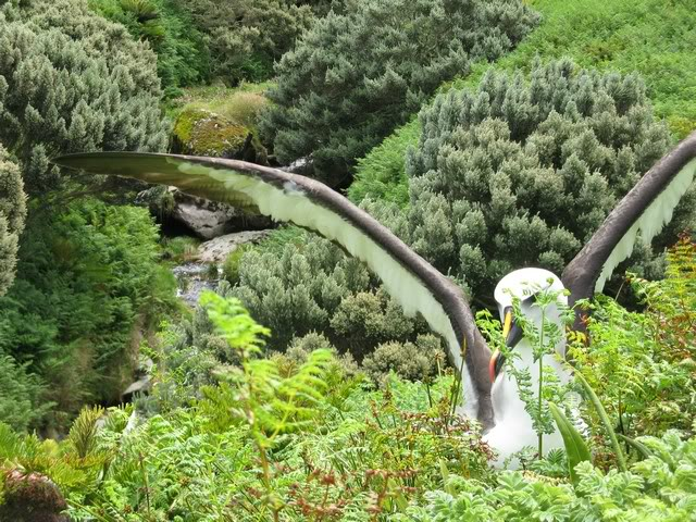 http://dxing.at-communication.com/upload/Image/Gough-Island_Tristan-da-Cunha-Archipelago_ZD9KX.jpg