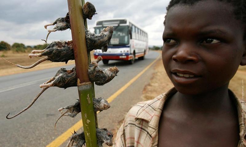 Малави 7Q7DFC