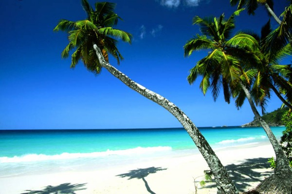 Сейшельские острова S79VJG DX Новости
