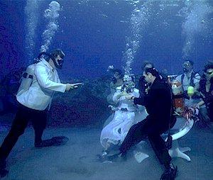 Остров Сент Люсия J68HZ DX Новости Свадьба на дне океана